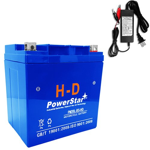 PowerStar--YTX30L-BS High Performance - Sealed AGM Motorcycle BatteryCHARGER 3YR WARRANTY