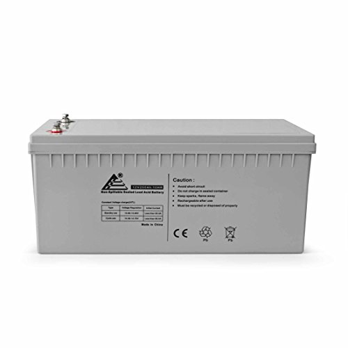 ExpertPower BLMFM12_200 XP-4D Solar Wind Power AGM Sealed Lead Acid Battery 12V 200Ah 10 Hour rate 220Ah 20 hour rate 2400 W 1 Pack